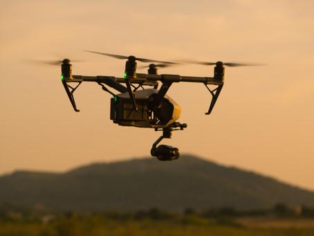 """Drones y modelos matemáticos predictivos para conservar la """"Cargola del Cap de Creus"""""""