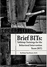 Brief BITs book image