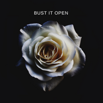 BUST IT OPEN COVER.png