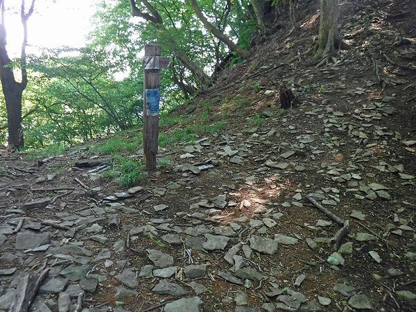20210610_物語山からトヤ山04.jpg