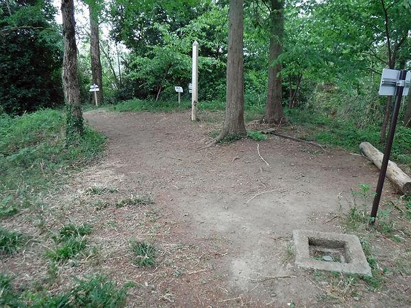 20210515_神川町御岳山04.jpg