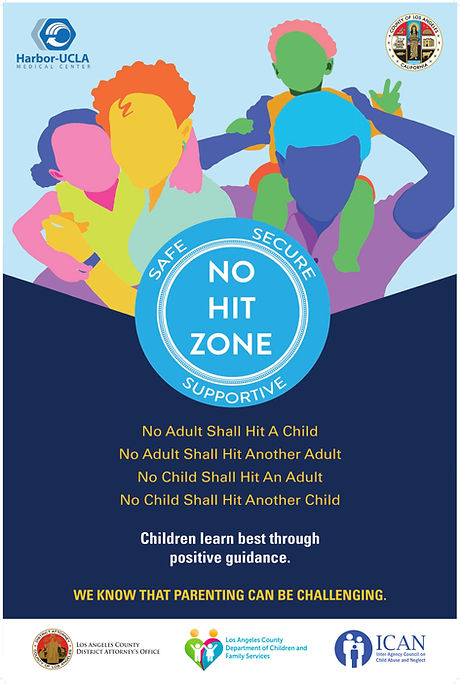 NO HIT ZONE POSTER_20x30_ENG (1).jpg