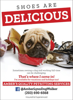 amber_s_quality_pet_sitting_services-125662_1_4pg_Jul2018_page_1