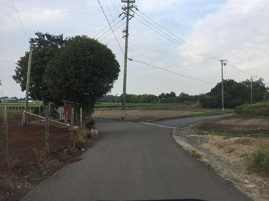 三重県サバゲ4.JPG