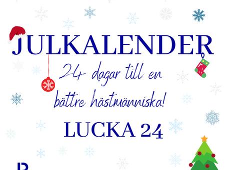 Lucka 24: Det ska vara roligt att ha häst!