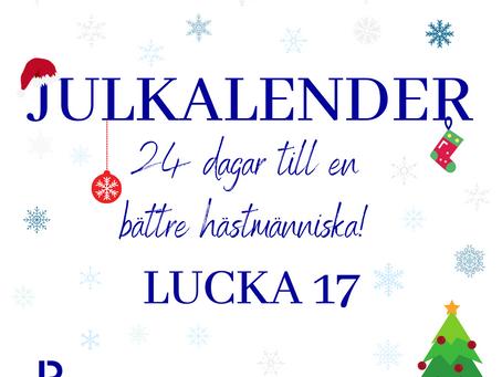 Lucka 17: Rid kortare pass!