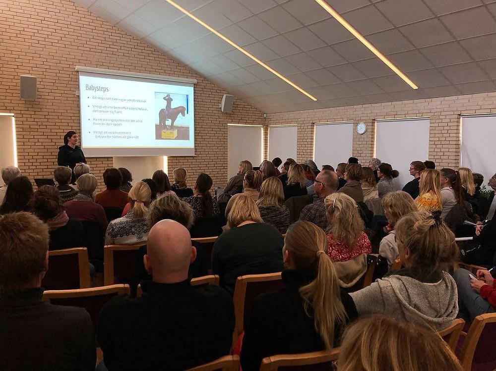 Elin Bössfall har föreläsning med temat Hästens välmående i träning