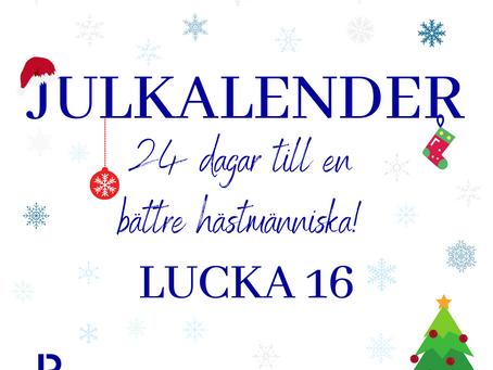 Lucka 16: Vad är bakbromsen?