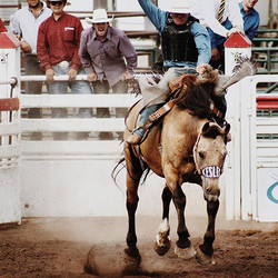 Got some great shots at the #rodeo tonight