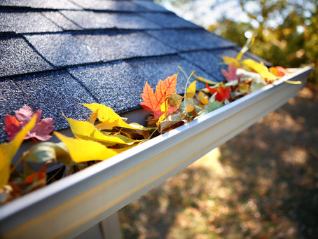 6 Essential Fall Maintenance Tips
