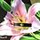 Thumbnail: Floral Cuff