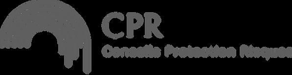 L'iamge représente le logo du Cabinet Conseil Protection Risques