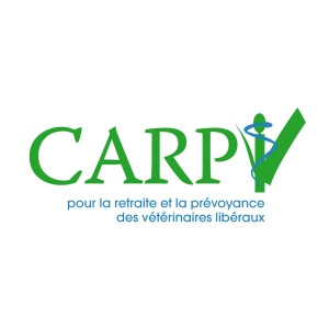 carpv.jpg