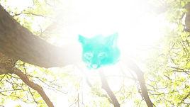 We Burn Daylight Still.jpg