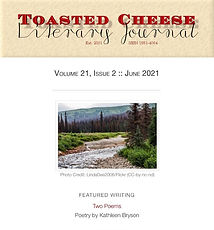 Toasted Cheese Literary Journal.jpg