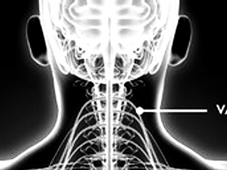 Stimulation des Vagus Nervs durch Ganzkörperkälte und die Auswirkungen