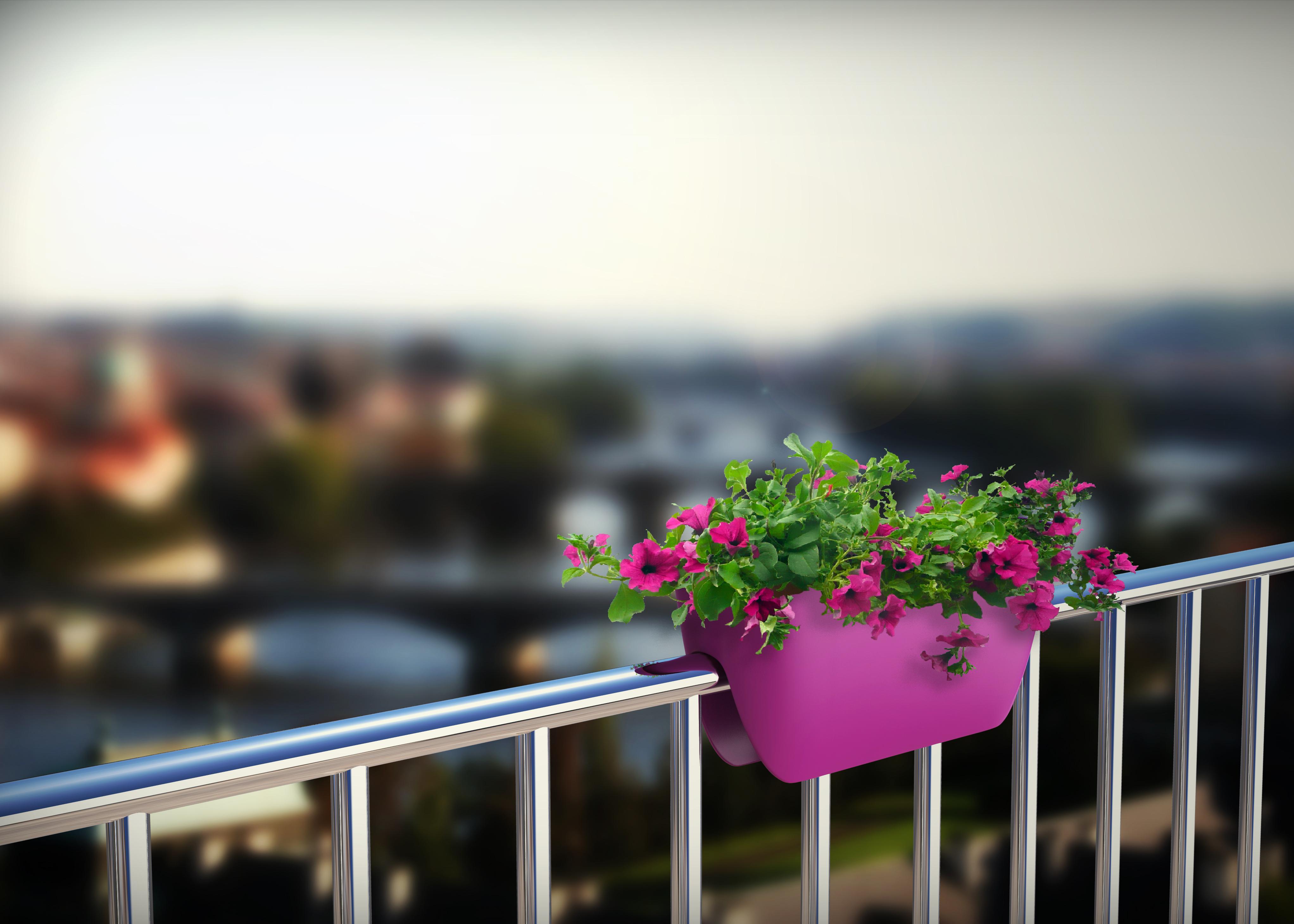 Posode, korita in lonci za rože