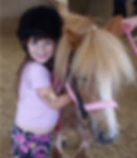 own a pony experience