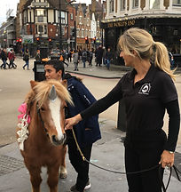 pony hire in london