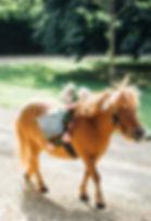 pony for wedding london