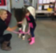 pony school visit Cambridge