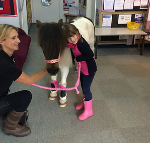 pony school visit Cambridge
