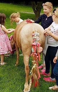 Unicorn parties