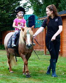pony hire for birthdays