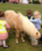 unicorn party london pony hire pony parties london pony parties essex pony parties norfolk pony parties hertfordshire pony hire unicorn parties pony school visits tiny tots riding lessons