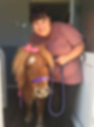 Care home pony visit