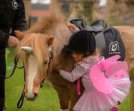 unicorn party london pony hire pony parties london pony parties essex pony parties norfolk pony parties hertfordshire pony hire unicorn parties