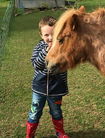 Pony hire for birthdays. Unicorn party ideas. Childrens riding lessons. Pony at my party. pony rides.