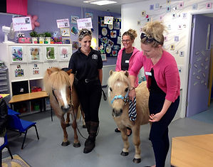 Bedford pony parties pony rides london unicorn party london pony hire pony parties london pony parties essex pony parties norfolk pony parties hertfordshire pony hire unicorn parties pony school visits pre school riding riding lessons for children pony rides at corporate events home school riding lessons