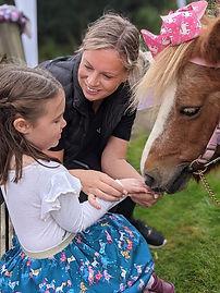Suffolk pony parties