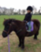 unicorn party london pony hire pony parties london pony parties essex pony parties norfolk pony parties hertfordshire pony hire unicorn parties own a pony experience tiny tots riding lessons for children