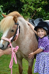 unicorn party london pony hire pony parties london pony parties essex pony parties norfolk pony parties hertfordshire pony hire unicorn pa
