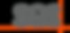 SGS_logo_logotype.png