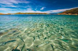 Port-Cros Island