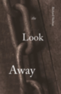 The Look Away by Richard Skelton