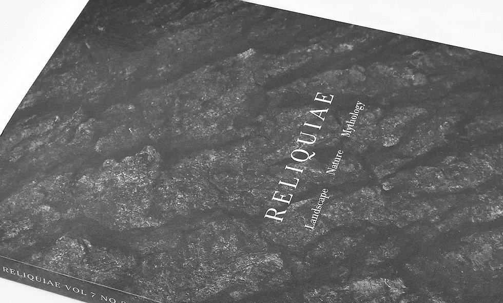 Reliquiae Vol 7 No 2 (Various Authors)