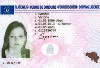 Vertodrive rijbewijs.jpg