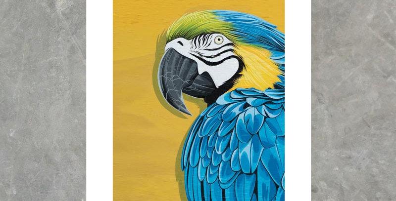 Macaw - Print