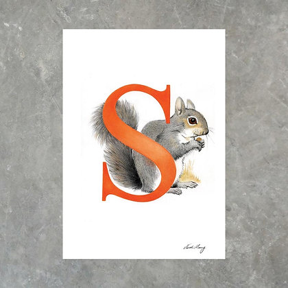 S For Squirrel - Print