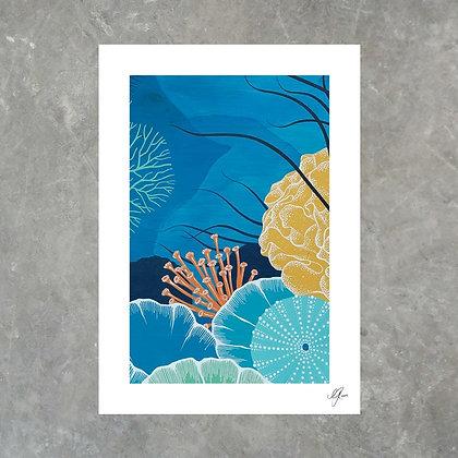 Marine Life - Print