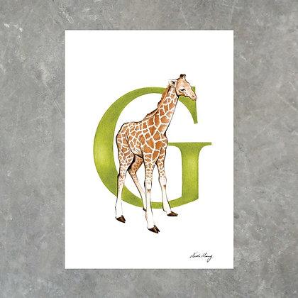 G For Giraffe - Print