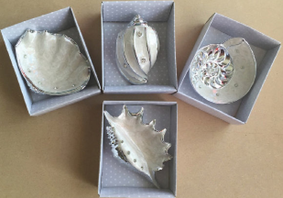 Sea shell gifts 4 designs