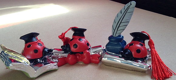 Graduation Tableware Gift