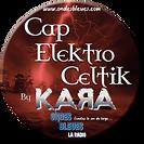 LOGO CAP ELEKTRO.png