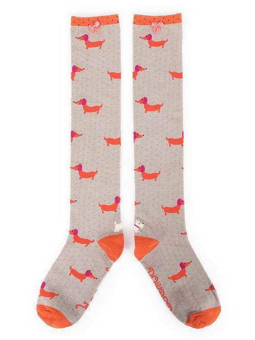 Powder Design Sausage Dog Knee High Socks Slate