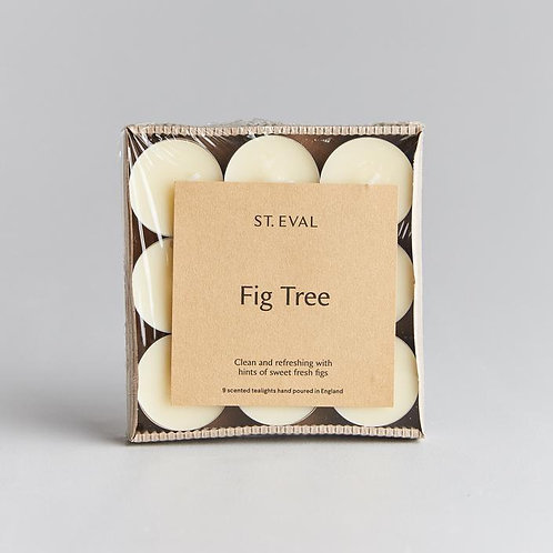 St Eval Fig Tree scented tealight candles